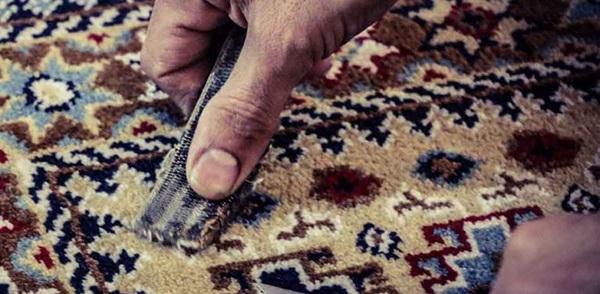 رفع سوختگی فرش ماشینی